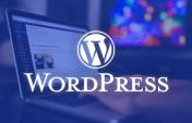 WordPress Ping Servisleri Nedir ?